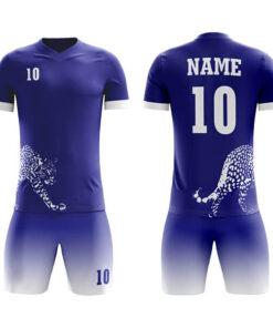 Club/Team Wear/League Sublimation Soccer Kits with Leopard Printing AFYM:2043